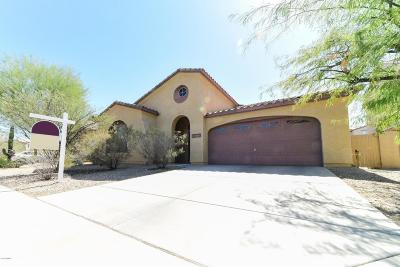 Goodyear Single Family Home For Sale: 18079 W Paseo Way