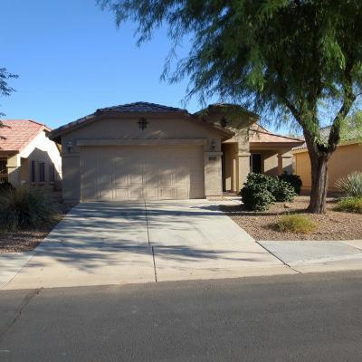Buckeye Single Family Home For Sale: 23340 W Twilight Trail