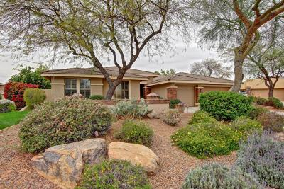 Tempe Single Family Home For Sale: 142 E Louis Way