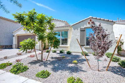 Mesa Single Family Home For Sale: 4952 S Eastern Run