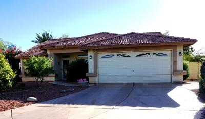 Sun City Single Family Home For Sale: 11043 W Yukon Drive