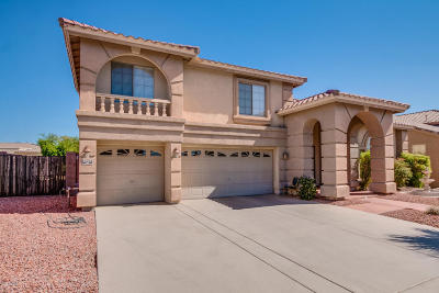 Litchfield Park Single Family Home For Sale: 5905 N 133rd Avenue