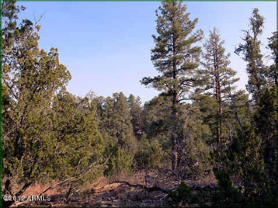 Overgaard AZ Residential Lots & Land For Sale: $38,500