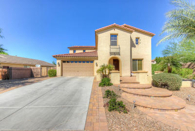 Chandler Single Family Home For Sale: 700 W Powell Way