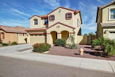 Chandler, Gilbert, Mesa, Tempe Single Family Home For Sale: 3328 E Rochelle Street