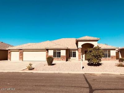 San Tan Valley Single Family Home For Sale: 3986 E Brae Voe Way