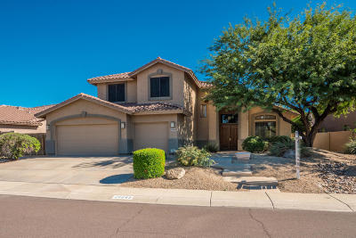 Cave Creek Single Family Home For Sale: 26643 N 45th Place