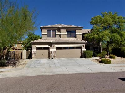 Phoenix Single Family Home For Sale: 2306 W Red Range Way