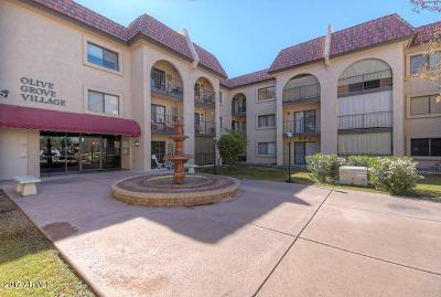 Apartment For Sale: 3033 E Devonshire Avenue #2023
