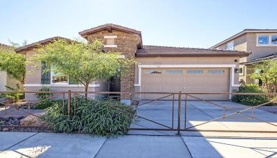 Tolleson Single Family Home For Sale: 10327 W Pima Street