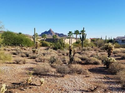 Fountain Hills Residential Lots & Land For Sale: 16555 E Saguaro Boulevard
