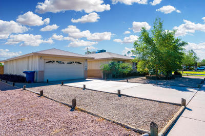 Tempe Single Family Home For Sale: 3321 S Terrace Road