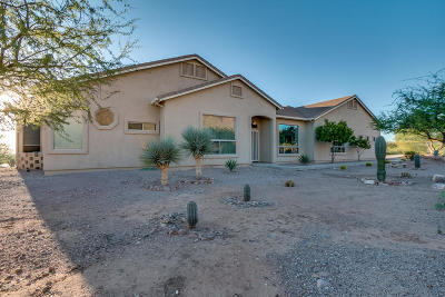 Apache Junction Single Family Home For Sale: 2564 N Charlebois Road