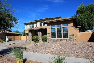Queen Creek Single Family Home For Sale: 18648 E Reins Road