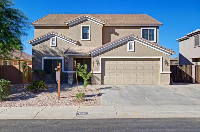 San Tan Valley Single Family Home For Sale: 3240 E Desert Moon Trail