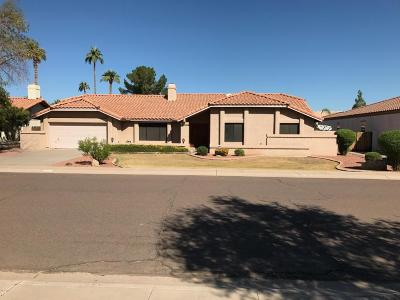 Tempe Single Family Home For Sale: 950 E Verde Lane E