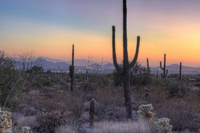 Scottsdale Residential Lots & Land For Sale: 9701 E Happy Valley Road