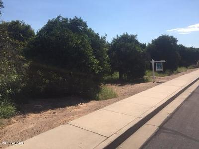 Mesa Residential Lots & Land For Sale: 3735 E Huber Street