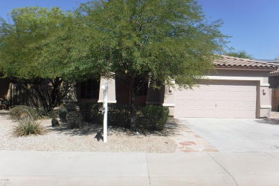 Goodyear Single Family Home For Sale: 17528 W Desert View Lane