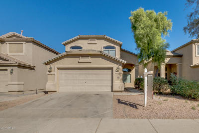 Maricopa Single Family Home For Sale: 41860 W Hillman Drive