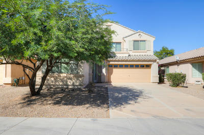 Maricopa Single Family Home For Sale: 40370 W Robbins Drive