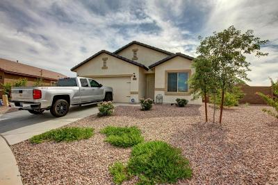 Maricopa Single Family Home For Sale: 40171 W Pryor Lane