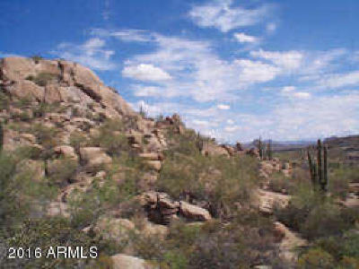 Scottsdale Residential Lots & Land For Sale: 10134 E Cavedale Drive