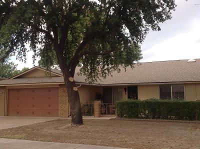 Sun City, Sun City West Gemini/Twin Home For Sale: 10012 W Shasta Drive