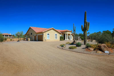 Cave Creek Single Family Home For Sale: 5712 E Desert Vista Trail