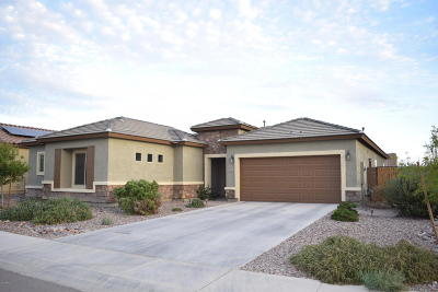 Florence Single Family Home For Sale: 6597 W Desert Blossom Way