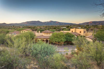 Cave Creek Single Family Home For Sale: 38704 N School House Road