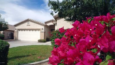 Phoenix Single Family Home For Sale: 2002 W Carson Road