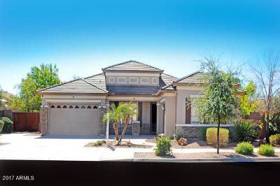 Queen Creek Single Family Home For Sale: 19169 E Mockingbird Drive