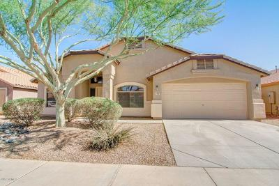 Maricopa County, Pinal County Single Family Home For Sale: 21795 N Van Loo Drive