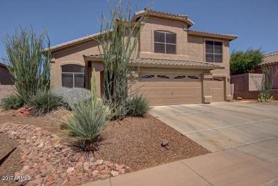 Phoenix Single Family Home For Sale: 1710 E Samuel Drive