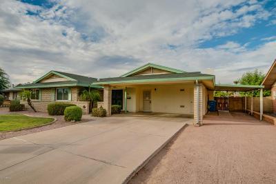 Phoenix Single Family Home For Sale: 4130 W Hayward Avenue