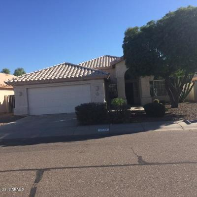 Phoenix Single Family Home For Sale: 3523 E Kristal Way