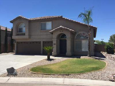 San Tan Valley Rental For Rent: 449 E Mayfield Drive