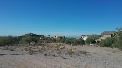 Mesa Residential Lots & Land For Sale: 8118 E Rochelle Street