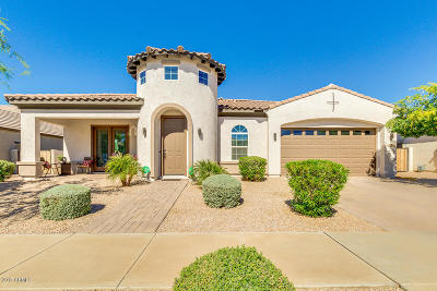 Queen Creek Single Family Home For Sale: 22412 E Pecan Lane