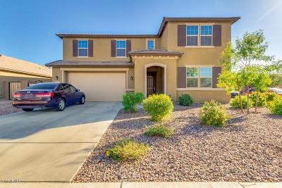 San Tan Valley Single Family Home For Sale: 903 W Desert Glen Drive