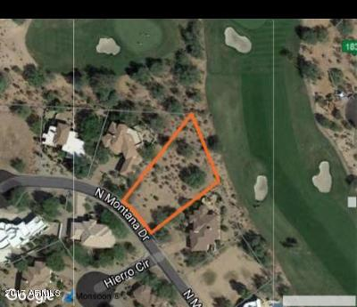 Rio Verde Residential Lots & Land For Sale: 27913 N Montana Drive