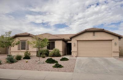 Buckeye Single Family Home For Sale: 22180 W Ashleigh Marie Drive