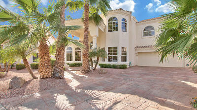 Gilbert Single Family Home For Sale: 1401 W Sandpiper Drive