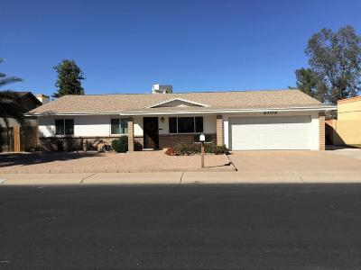 Chandler Single Family Home For Sale: 2102 W Flint Street