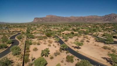 Gold Canyon AZ Residential Lots & Land For Sale: $120,000
