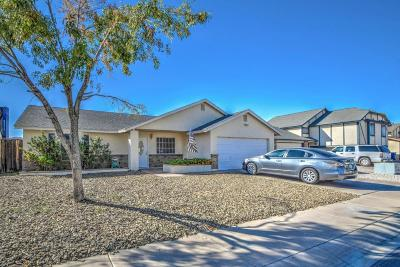 Gilbert Single Family Home For Sale: 1010 N Palm Street