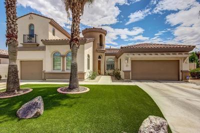 Litchfield Park Single Family Home For Sale: 813 W Azure Lane