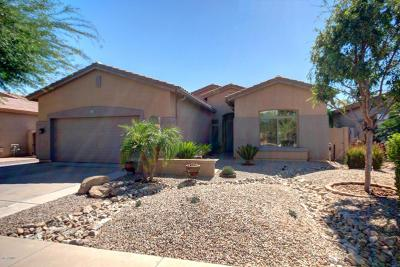 Chandler, Gilbert, Mesa, Tempe Single Family Home For Sale: 971 E Taurus Place