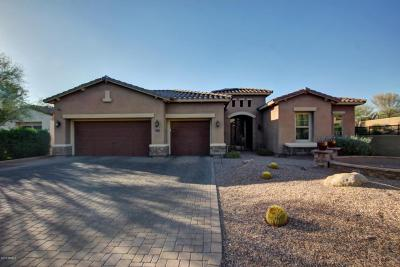 Cave Creek Single Family Home For Sale: 5256 E Barwick Drive